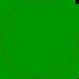 Sector de la horticultura